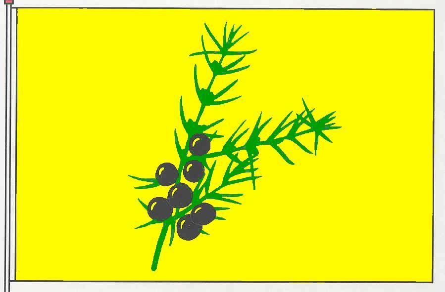 Flagge GemeindeJörl, Kreis Schleswig-Flensburg