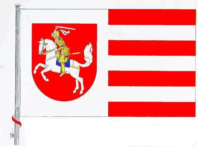 Flagge Kreis Dithmarschen