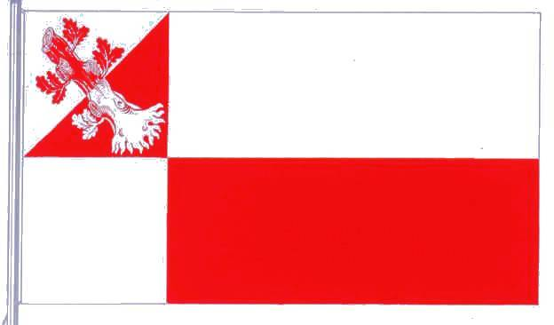 Flagge StadtWahlstedt, Kreis Segeberg